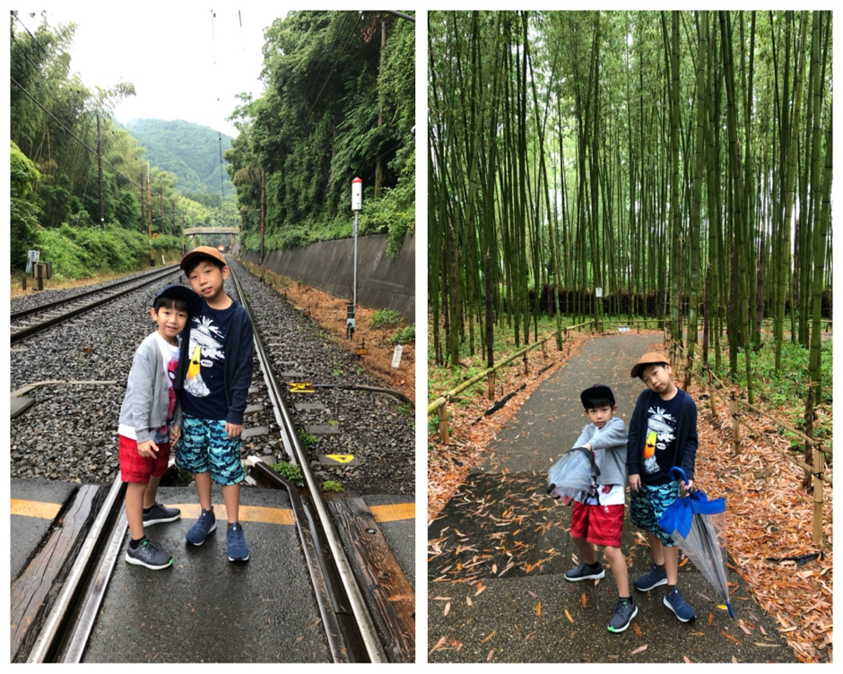 Wonder Years Family Travels BambooPark Kyoto
