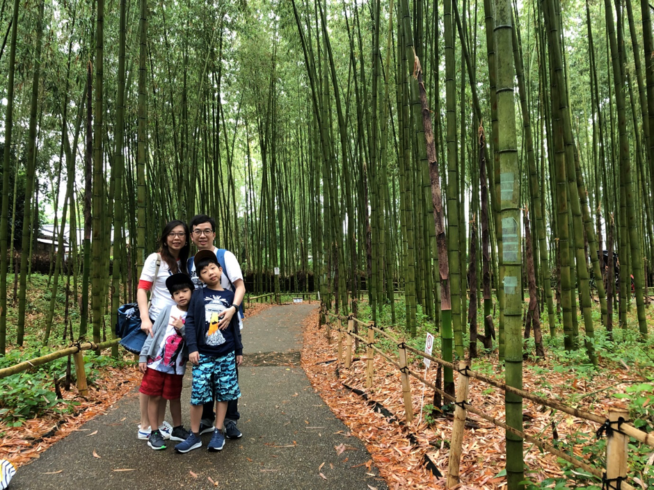 Wonder Years Family travels Bamboo Park Kyoto