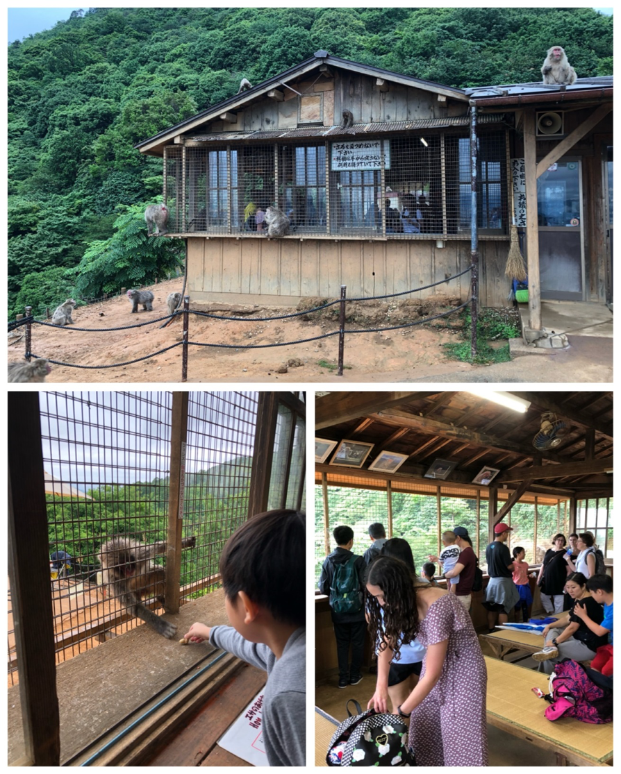 Wonder Years Family Travels Monkey Park Kyoto
